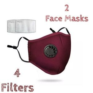 Accessories - 💥DEAL💥 2 Wine Face Covers 4 Filters